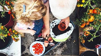 Balkonowa uprawa warzyw