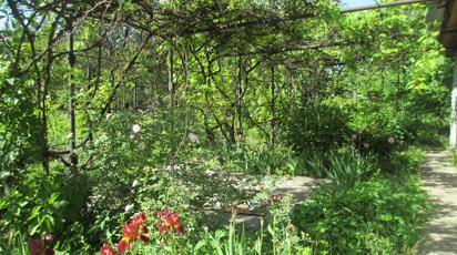 W odwiedzinach w ogrodzie naszej klientki Pani Marzeny Bartosiewicz