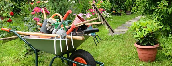 Najważniejsze prace ogrodnicze do wykonania w maju