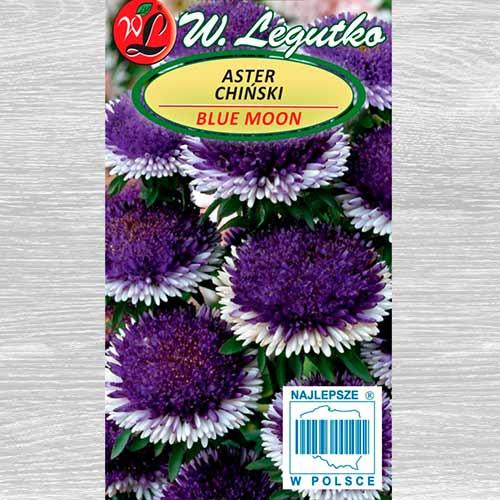 Aster chiński Liliput Blue Moon Legutko interface.image 1 interface.art 69561