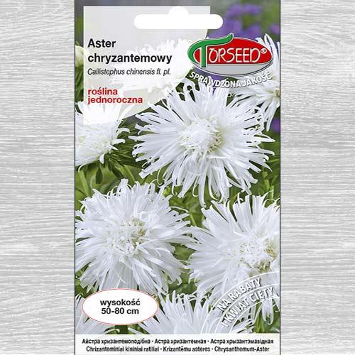 Aster chryzantemowy wysoki biały interface.image 1 interface.art 77510