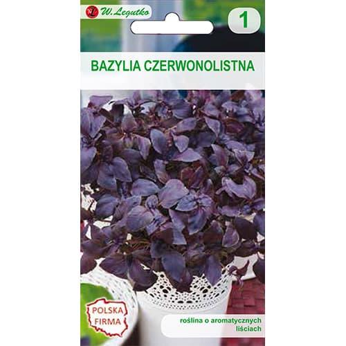 Bazylia właściwa czerwonolistna Legutko interface.image 1 interface.art 69666