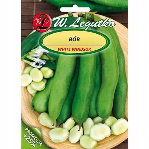 Bób ogrodowy Windsor Biały Legutko interface.image 1 interface.art 78443