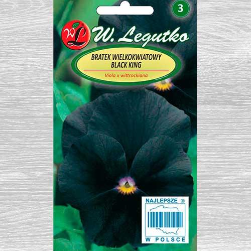 Bratek wielkokwiatowy Black King Legutko interface.image 1 interface.art 69570