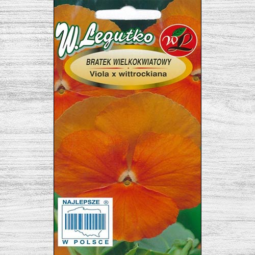 Bratek wielkokwiatowy Orange Sun Legutko interface.image 1 interface.art 78598