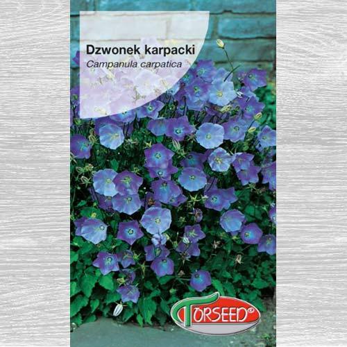 Dzwonek karpacki niebieski interface.image 1 interface.art 77529