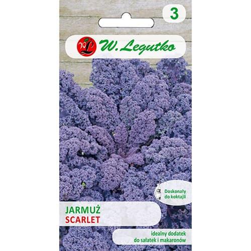 Jarmuż Scarlet Legutko interface.image 1 interface.art 69475