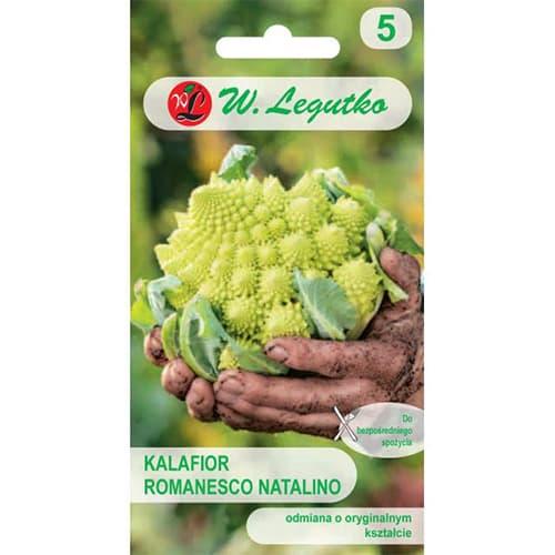 Kalafior Romanesco Legutko interface.image 1 interface.art 69477