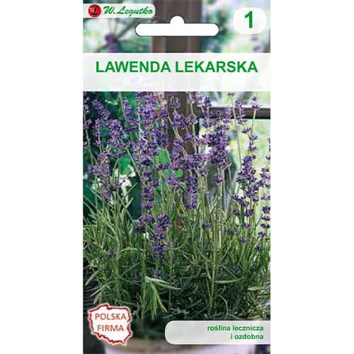 Lawenda lekarska Legutko interface.image 1 interface.art 69675