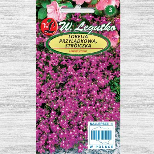 Lobelia przylądkowa (Stroiczka) karminowo-czerwona Legutko interface.image 1 interface.art 78572