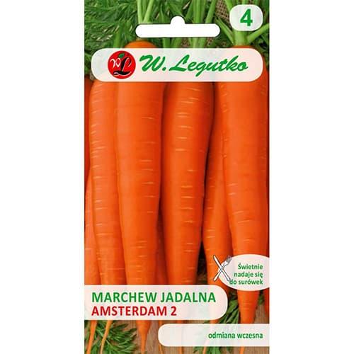 Marchew jadalna Amsterdam 2 Legutko interface.image 1 interface.art 69490