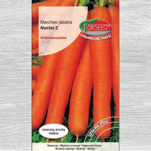 Marchew jadalna Nantes 2 interface.image 1 interface.art 77625