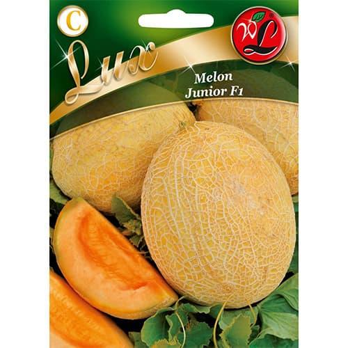 Melon Junior F1 Legutko interface.image 1 interface.art 69494