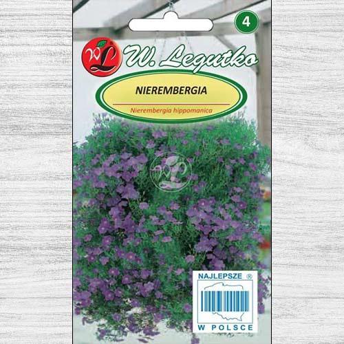 Nierembergia niebieska Legutko interface.image 1 interface.art 78624