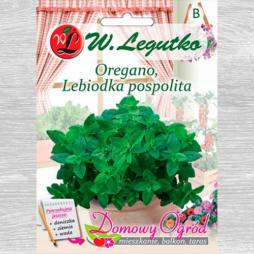 Oregano, Lebiodka pospolita Legutko interface.image 1 interface.art 69648