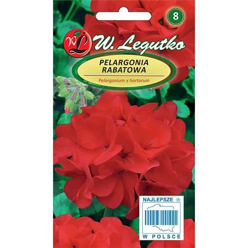 Pelargonia rabatowa Gama F1 fioletowa Legutko interface.image 1 interface.art 78633