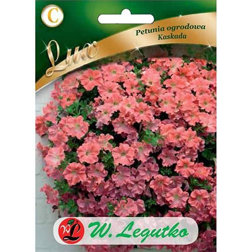 Petunia ogrodowa Kaskada łososiowa Legutko interface.image 1 interface.art 78671