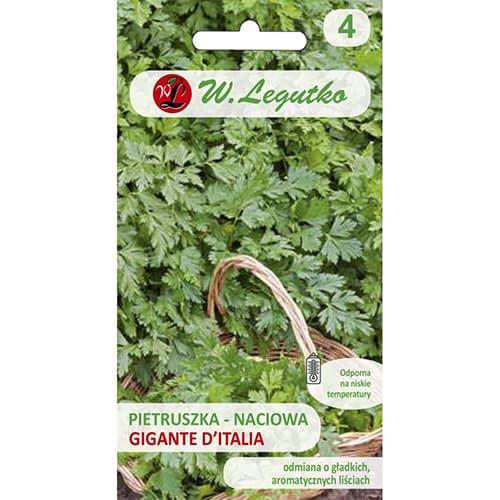Pietruszka naciowa Gigante d'Italia Legutko interface.image 1 interface.art 69513