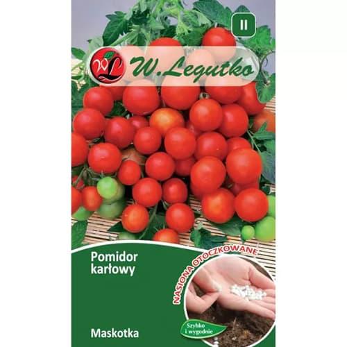 Pomidor gruntowy karłowy Maskotka Legutko interface.image 1 interface.art 69518