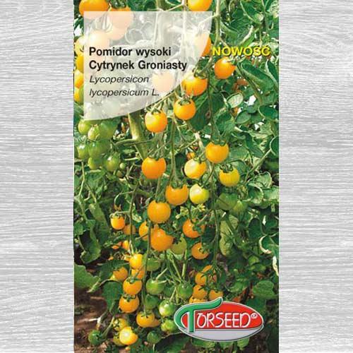Pomidor wysoki Cytrynek Groniasty interface.image 1 interface.art 77633