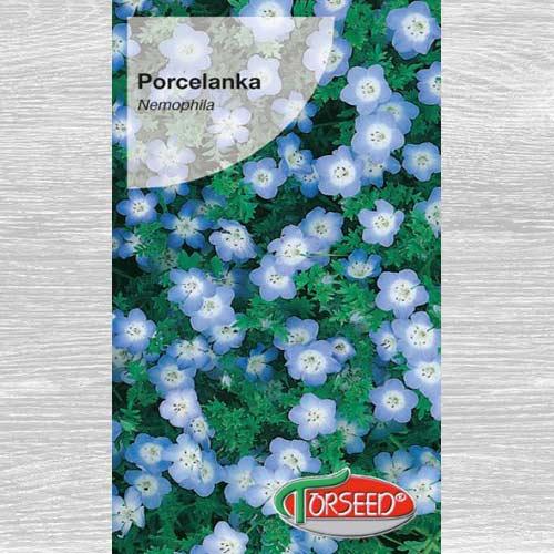 Porcelanka niebieska interface.image 1 interface.art 77580