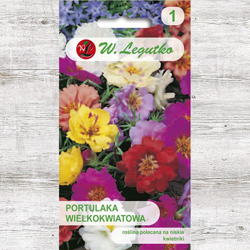 Portulaka wielkokwiatowa, mieszanka Legutko interface.image 1 interface.art 78585