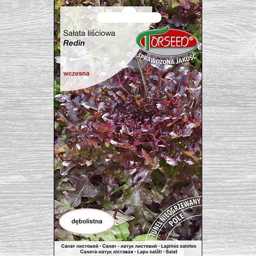 Sałata liściowa Redin interface.image 1 interface.art 77645