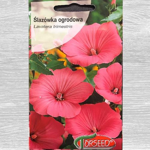 Ślazówka różowa interface.image 1 interface.art 77587