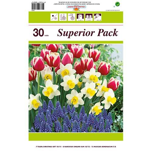 Super oferta! Tulipan Christmas Gift, Narcyz Smiling Sun, Szafirek armeński, zestaw 30 cebul interface.image 1 interface.art 67542