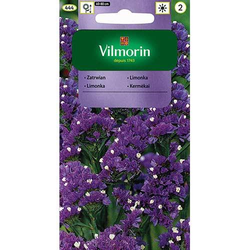 Zatrwian wrębny różowo lawendowo niebieski Vilmorin interface.image 1 interface.art 77693
