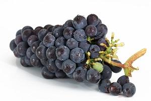 Dlaczego winogrona pękają