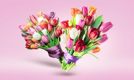 Tulipanowa mania | Dom i Sad