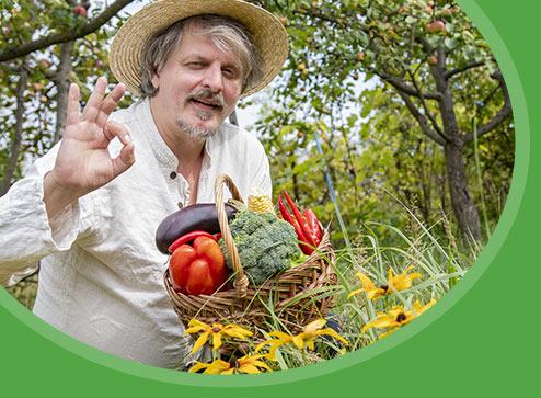Katalog - -20% na nasiona warzyw i kwiatów - Dom i Sad Polska